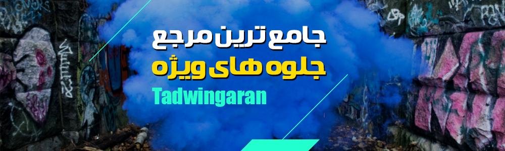 وب سایت تدوینگران
