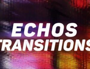 دانلود پریست ترانزیشن پریمیر Echos